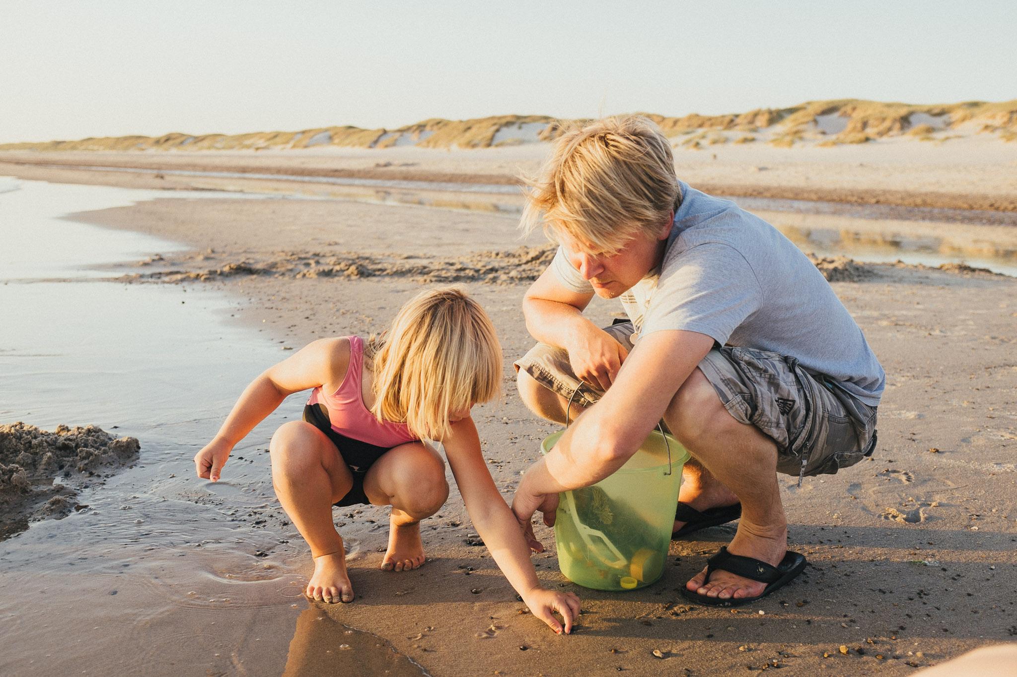 Nogle nyder de store vidder og horisonten på stranden - andre går med snuden ned mod sandet for at finde sneglehuse, muslinger og fine småsten.